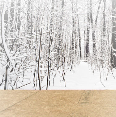 Winter Home Maintenance: Get Set for Snow